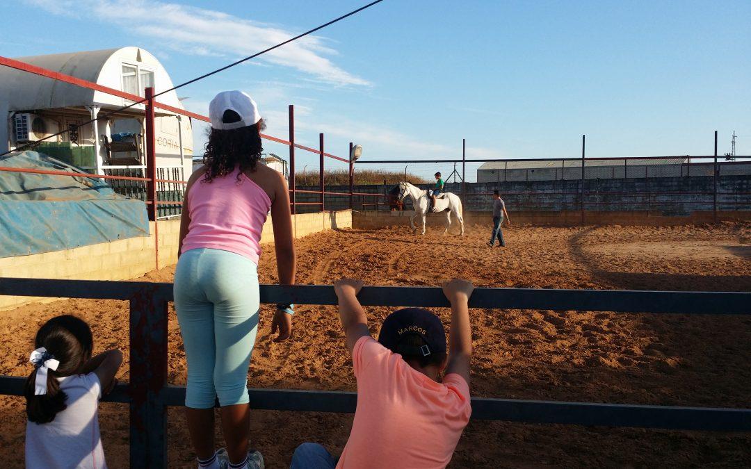 Equinoterapia. Niños que sueñan con sus caballos.