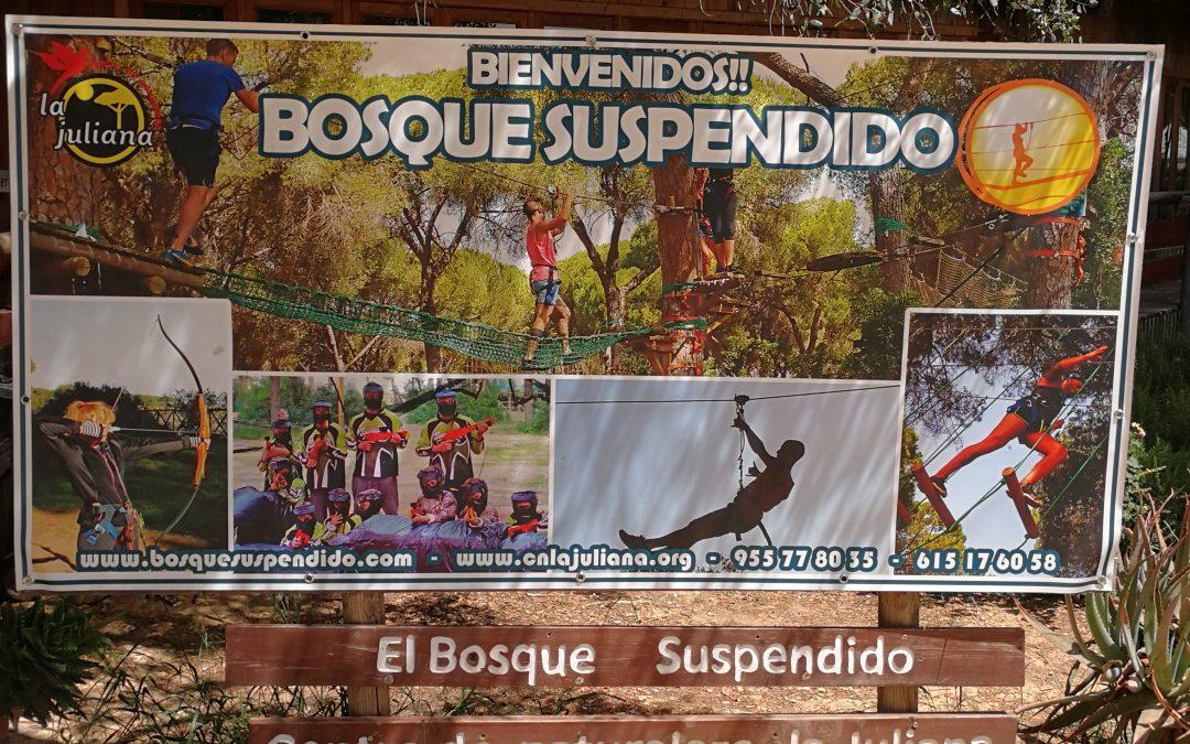"""Parque de Aventuras """"El Bosque Suspendido"""". Sevilla"""