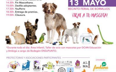 III Jornada Dia del Perro. Ayuntamiento de Bormujos. Sevilla )