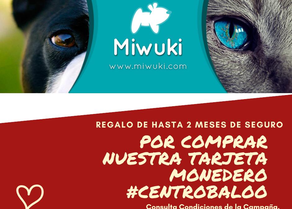 Seguro Veterinario para animales compañia Centro Baloo